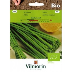 Szczypiorek Medium leaf Bio 1g Vilmorin