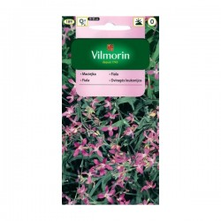 Maciejka 5g Vilmorin