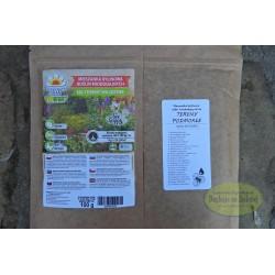 Kwietna łąka mieszanka bylinowa roślin miododajnych na tereny wilgotne 100g