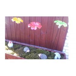 Efektowny kwiat na piku
